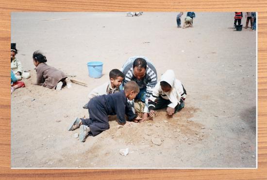 lutte contre la desertification et la se